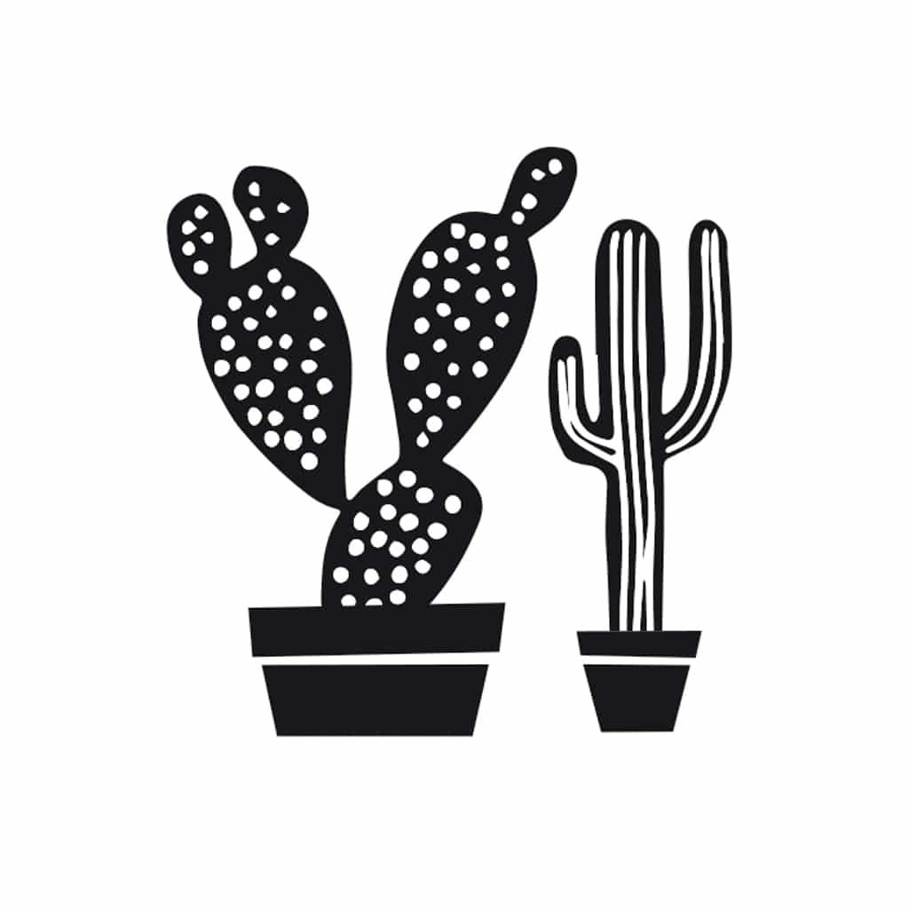 cacti stamp rico