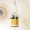 Macrame Plant Pot Holder and Hoop